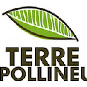 Terre Apollineus